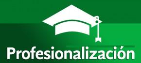 Banner-Profesionalizacion2
